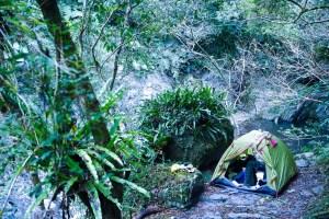 桃園,復興區,野溪溫泉,SPA水柱,野營,神木,芬多精
