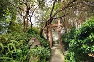 台中,台中美食,Buka這一隻熊,森林系咖啡館,百坪花園,鄉村雜貨,戶外婚禮,