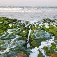 新北旅遊|老梅綠石槽覆蓋率15% 拍照的同時也要愛護環境