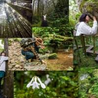 森林療癒|走進森林一定要做的8件事 森林守護家吳雲天老師推薦