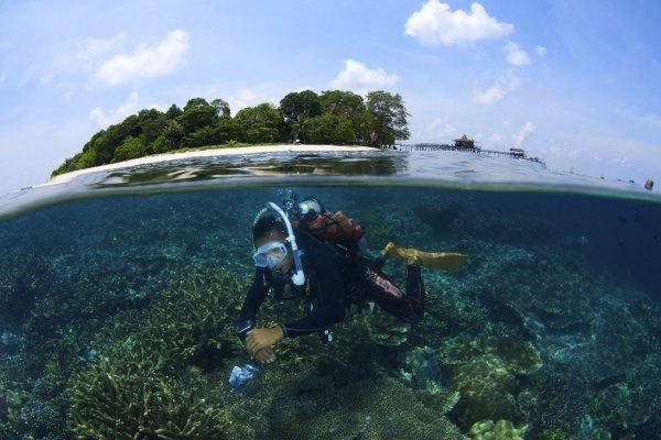 沙巴,馬來西亞,東南亞,潛水,西巴丹島