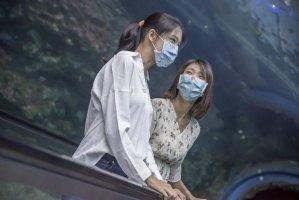 屏東海生館,璀璨之海,光影裝置,與鯨共舞
