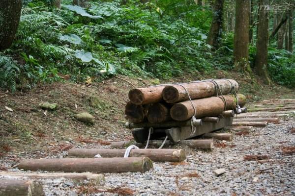 東眼山,森林遊樂區,森林木十人,木構,自然教育中心