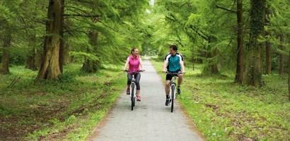 Polacy przesiadają się na rowery