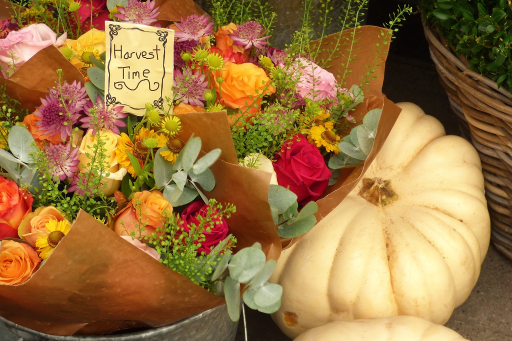 Harvest flowers and pumpkins