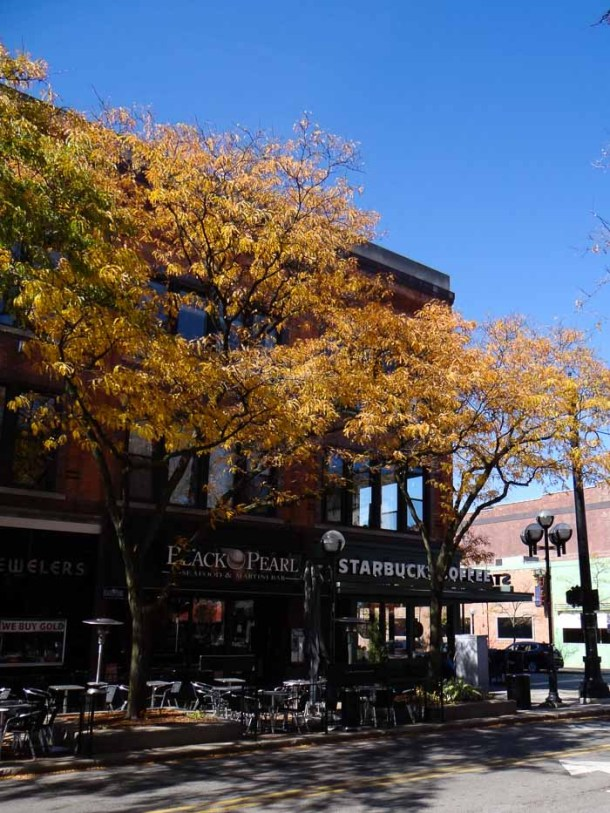 5 places to visit in Ann Arbor | Travel Cook Tell