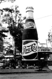 Pepsi stand at the Royal show