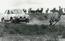 The great Safari Rally, Kenya