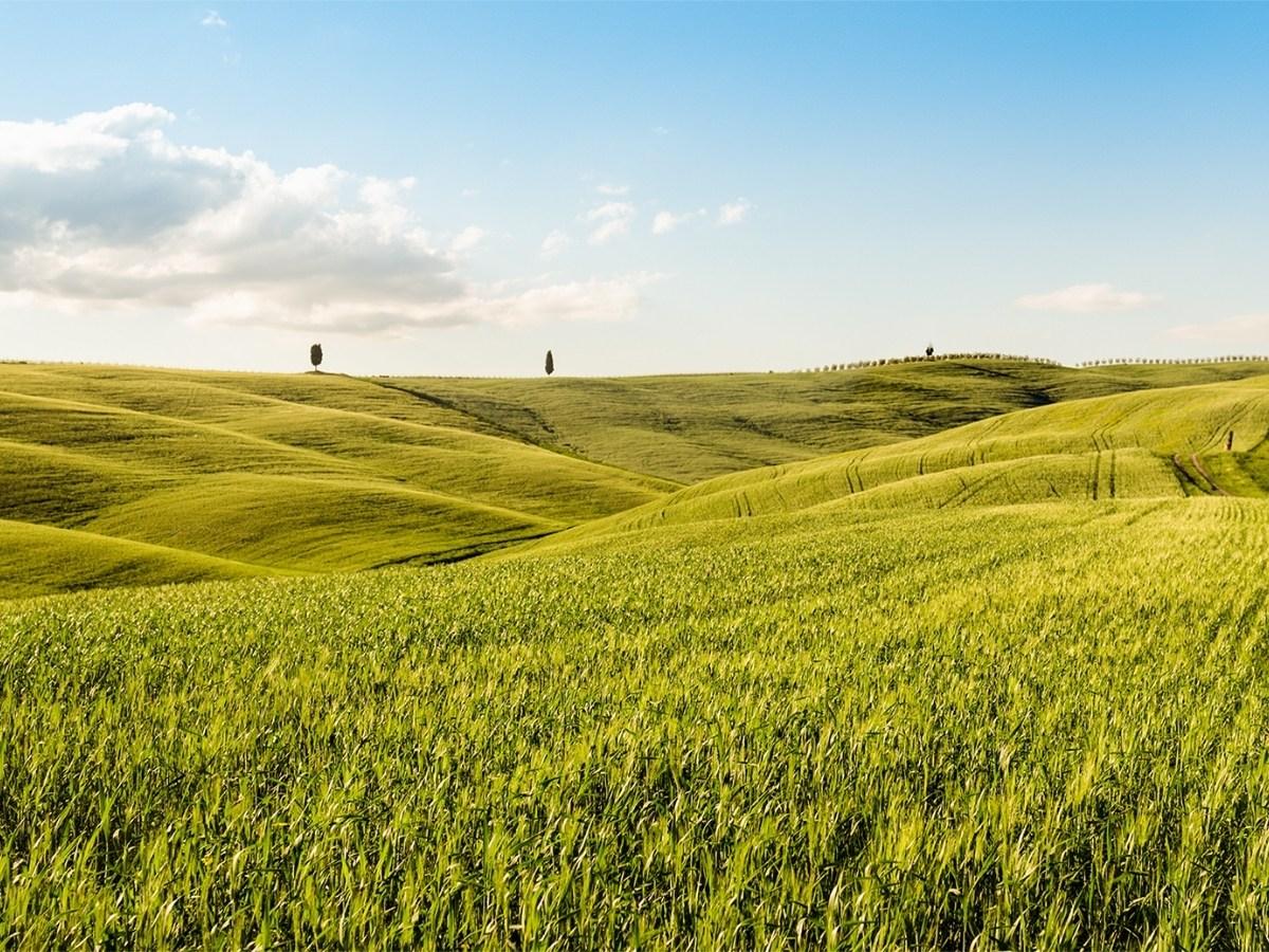 Colline della Toscana Val d'Orcia