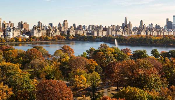 Central Park Famous In York United States