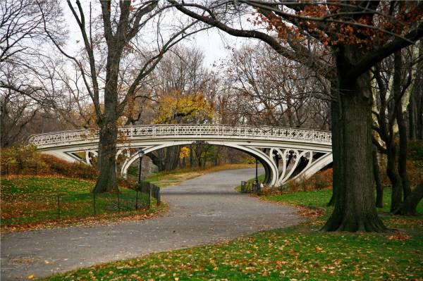 Gothic Bridge Central Park New York