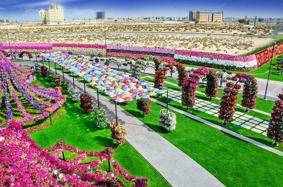 Dubai Miracle Garden Slice of Heaven on Deserts