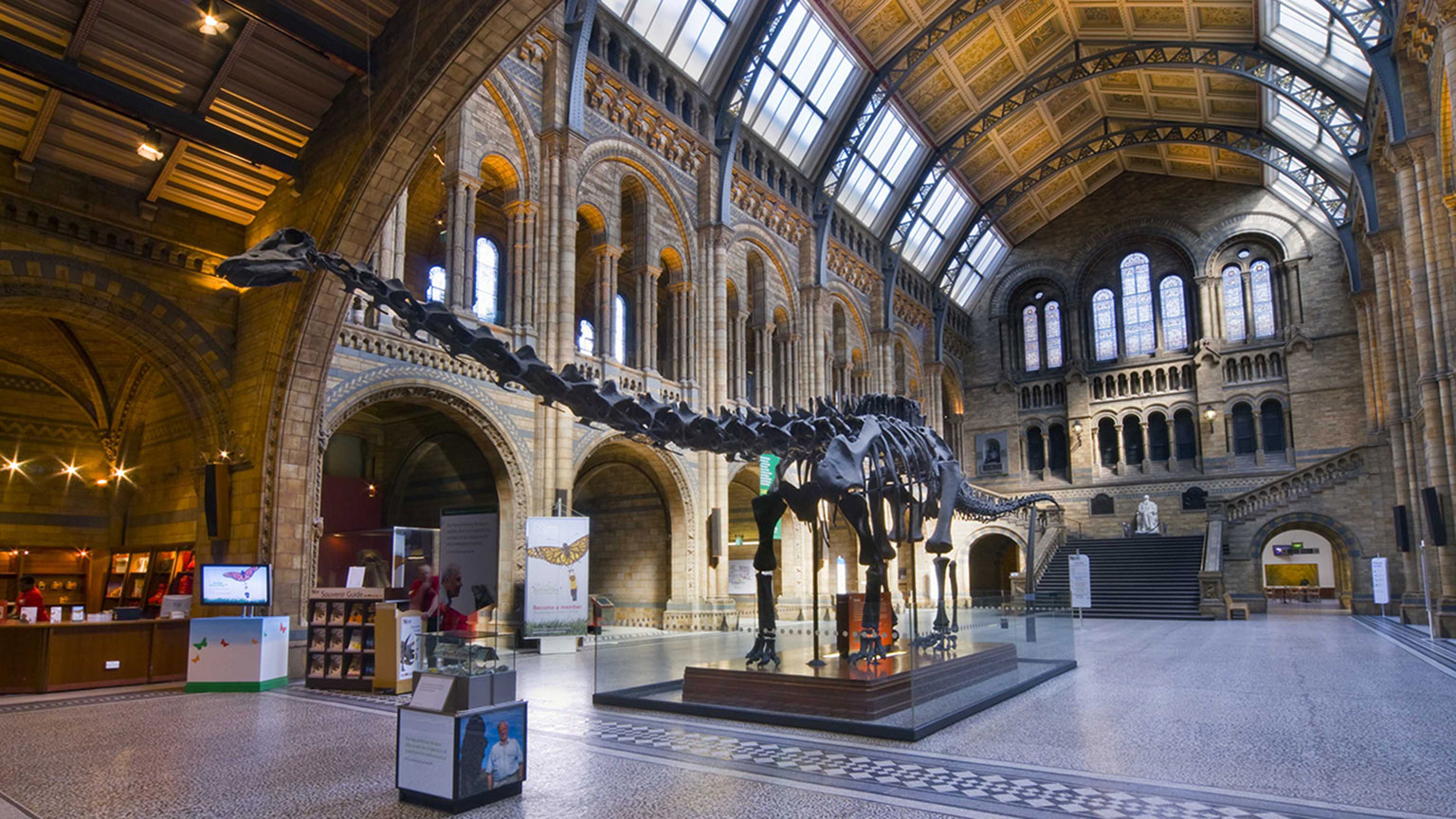 Natural History Museum Know The History of Nature and Living Creatures  Traveldiggcom