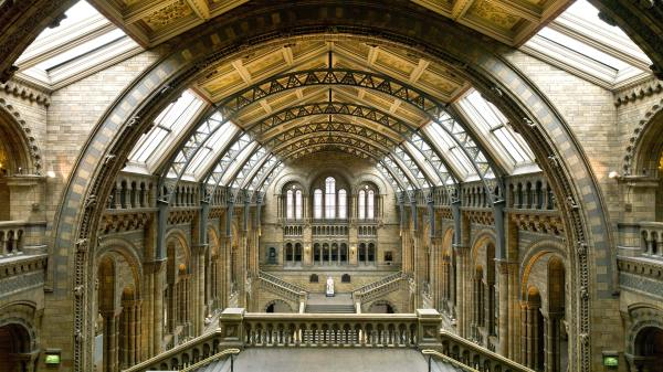 Natural History Museum Of Nature And Living Creatures