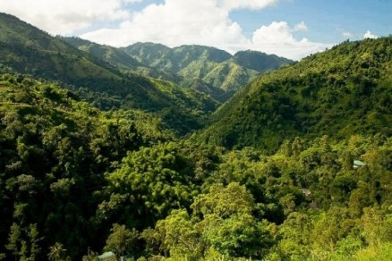 The Blue Mountains in Jamaica, one of the unmissable places to see