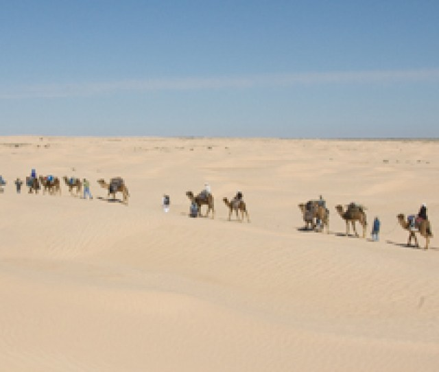 Sahara Desert Exploration A Journey With Bedouins Tunisia Africa