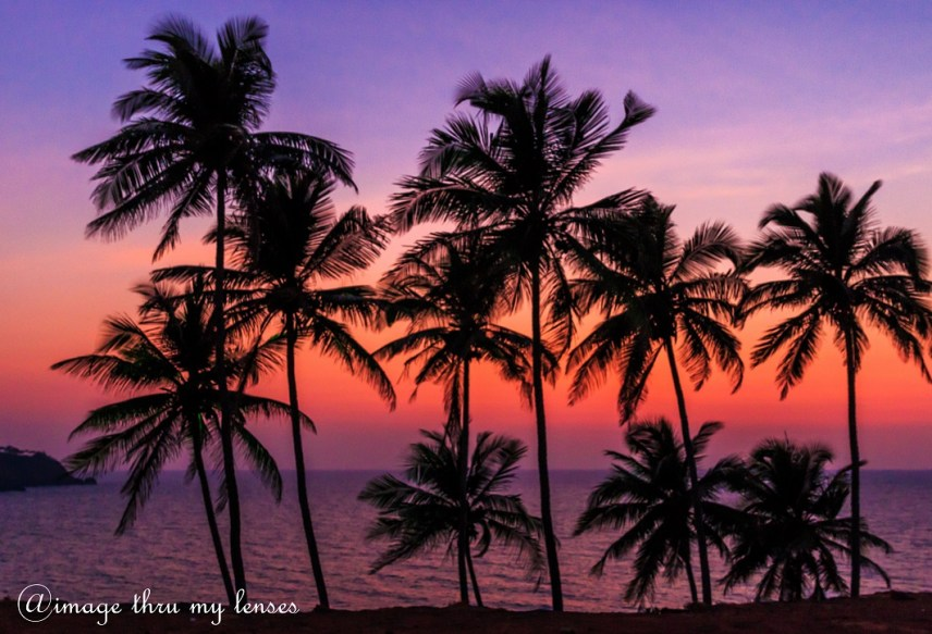 guide to best beaches in south goa
