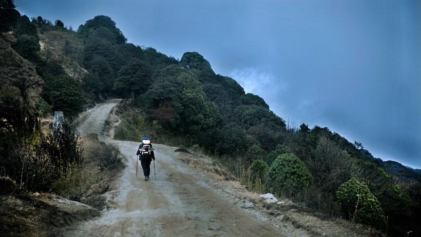 sandakphu trekking