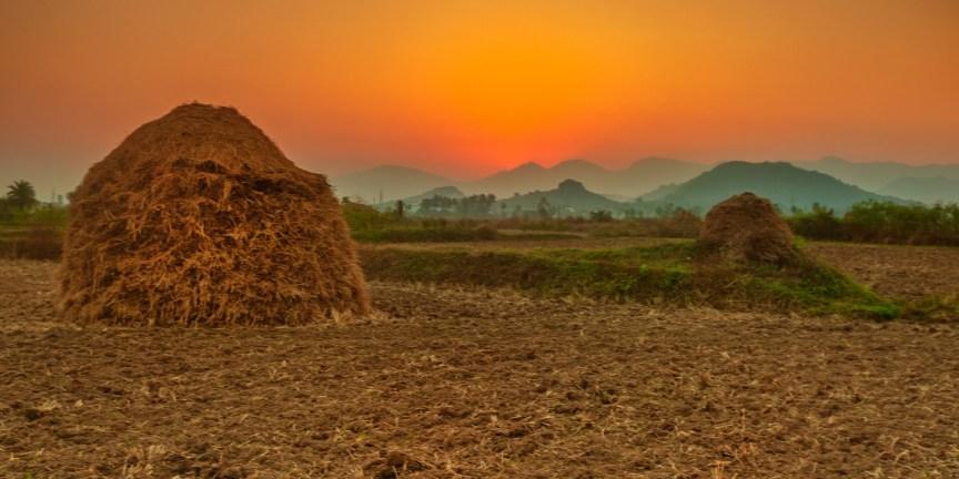 Exploring Odisha Tourism through Daringbari