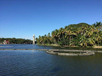 7 mejores cosas que hacer en Villahermosa (México)