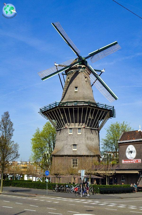 8 curiosidades sobre Amsterdam