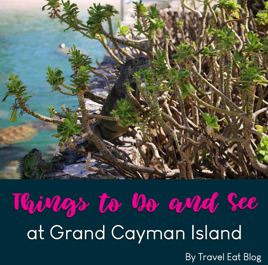 What to do at Grand Cayman