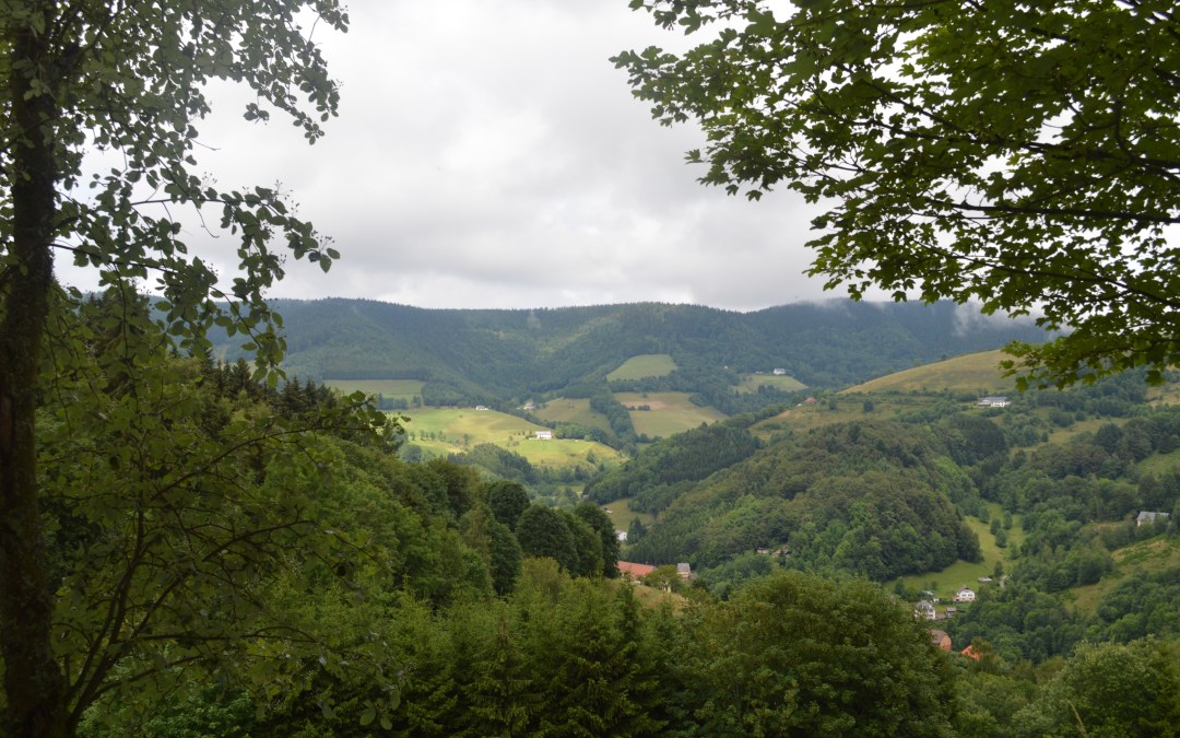 What to do in the Alsace region