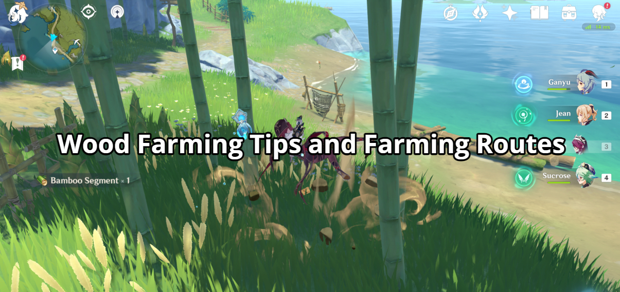 Wood Farming Tips and Farming Routes