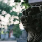 東京の縁結びで有名な神社・大宮八幡宮で小さいおじさんの目撃情報が後を絶たない。