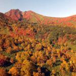 那須高原の紅葉特集!2015年の見頃や穴場情報をお伝えします!