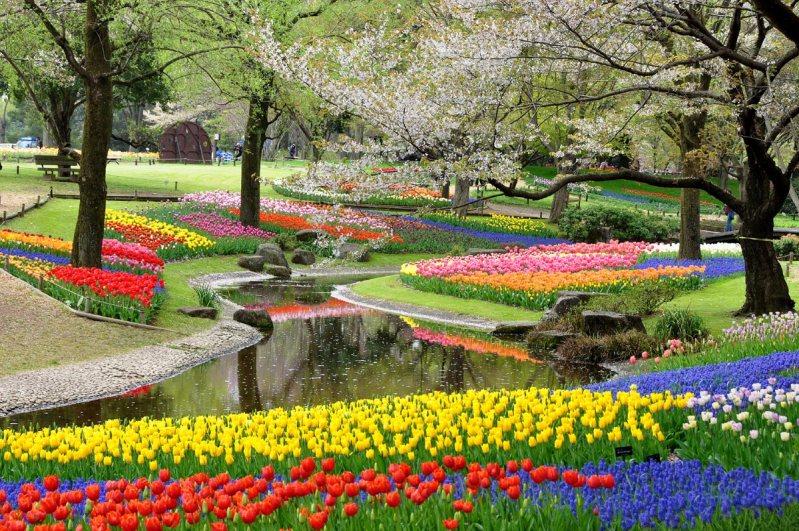 東京散歩☆おすすめコースをご紹介。