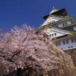 外国人に人気が高い大阪の観光スポットをご紹介!