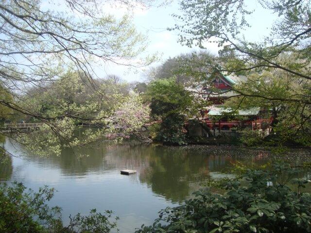 散歩デートって素敵!東京のオススメコースは井の頭公園周辺!
