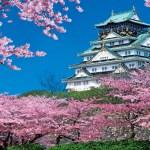 大阪の観光スポット【春編】