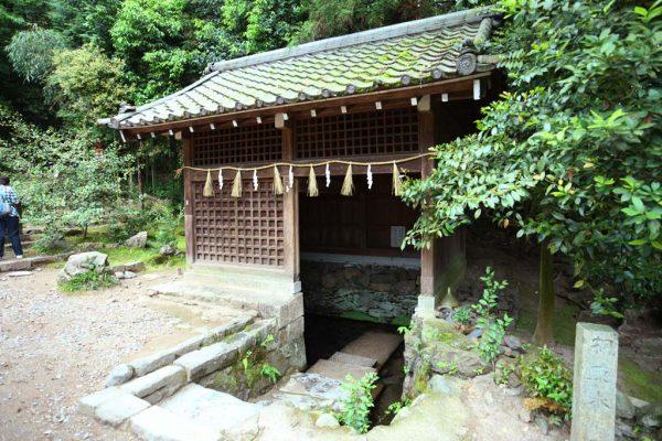 宇治上神社で季節限定の御朱印をいただこう!可愛いうさぎみくじも!