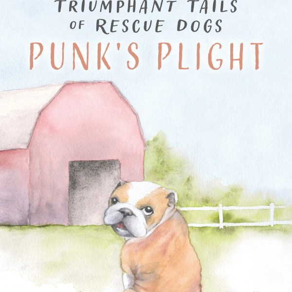The Triumphant Tails of Rescue Dogs: Punk's Plight