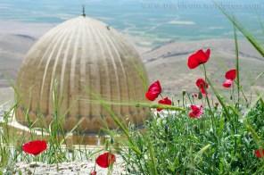 Turcja - Mardin