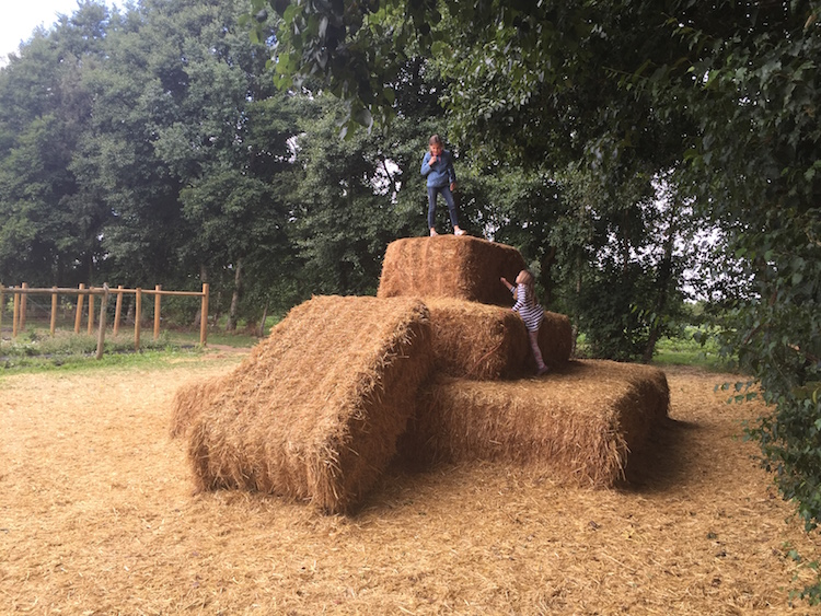 Hay for kids at Rectory Farm Oxord