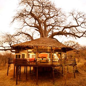 Manta Safari Sleep