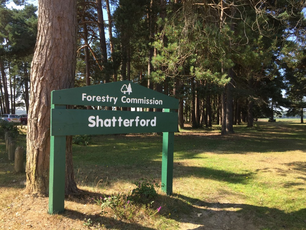 Sign of Shatterford Walk in the New Forest