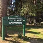 Shatterford Walk