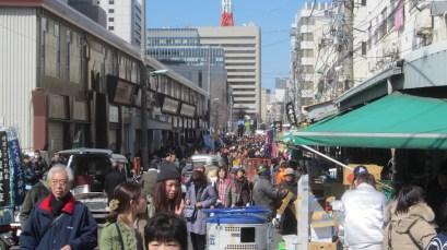 Tsujiki market area (16)