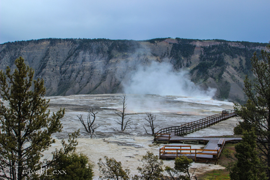 Mammoth Hot Springs - 8 Reasons You Should Visit Yellowstone National Park