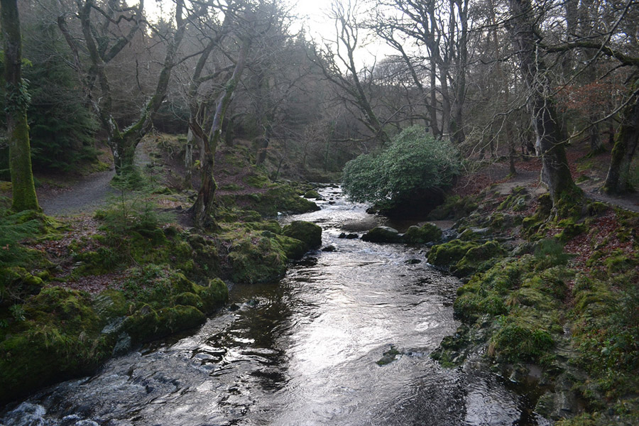 Tollymore Forest Park - Best hikes in the world