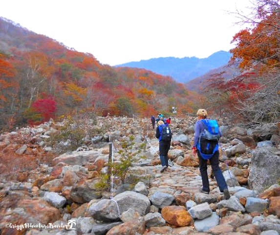 Jirisan National Park - Best hikes in the world