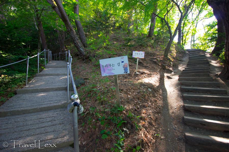 Steps - Guinsa