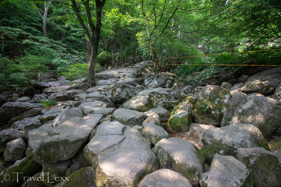 Rocks in the forest along the hiking trail on Geumjeongsan Mountain