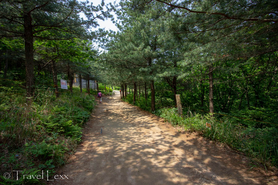 A path through the forest on Geumjeongsan Mountain