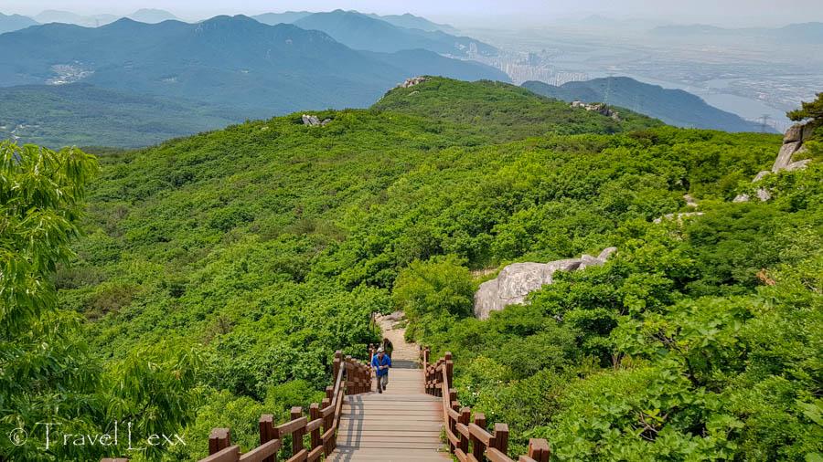 Stairs disappearing into verdant vegetation on Geumjeongsan Mountain