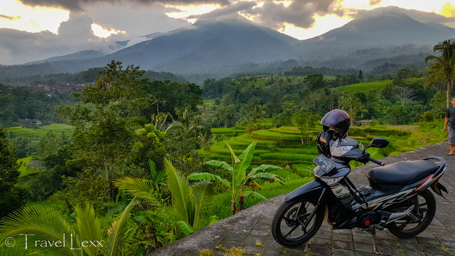 A moped parked at a viewpoint overlooking rice fields - 25 reasons you should never travel to Indonesia